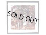 Ralph Lauren Photo Framed Store Display ラルフ・ローレン 店内 ディスプレイ #27